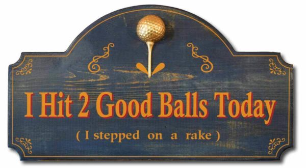I hit two good balls today i stepped on a rake